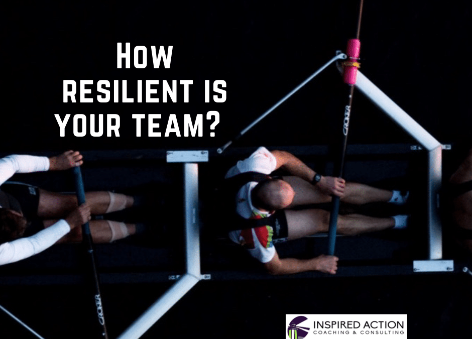 How Resilient Is Your Team?