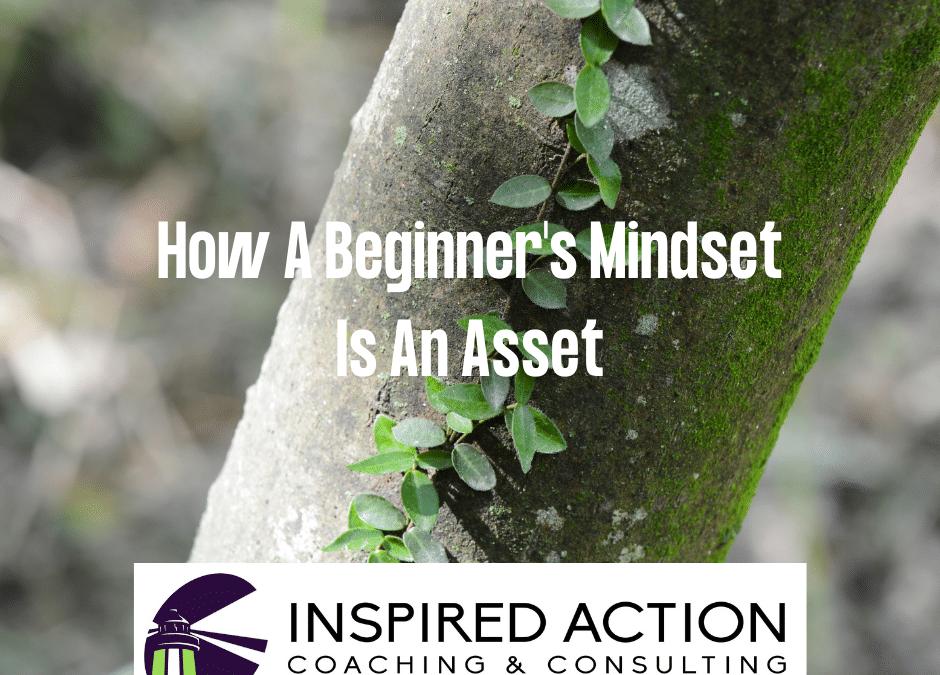 A Beginnner's Mind Is An Asset